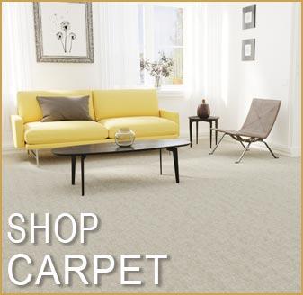 Shop Dream Weaver Carpet