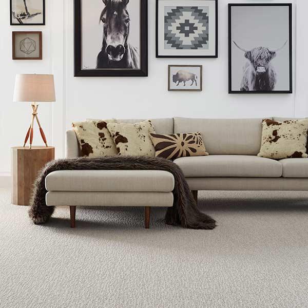 Masland Mesa Bella carpet room scene
